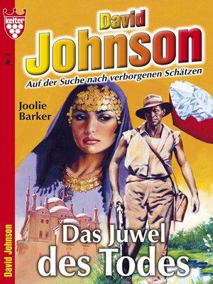 cover image of David Johnson 2--Abenteuerroman