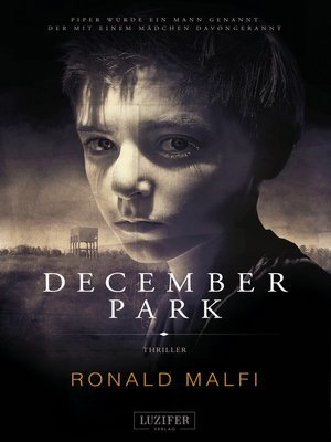 cover image of DECEMBER PARK