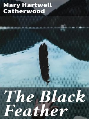 cover image of The Black Feather