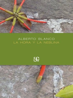 cover image of La hora y la neblina