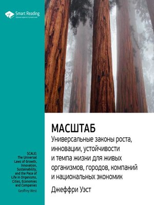 cover image of Масштаб