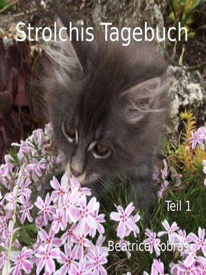 cover image of Strolchis Tagebuch--Teil 1
