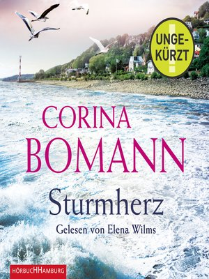 cover image of Sturmherz