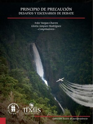 cover image of Principio de precaución