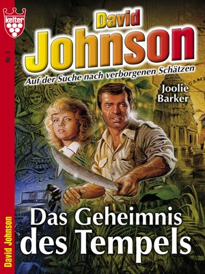 cover image of David Johnson 3--Abenteuerroman