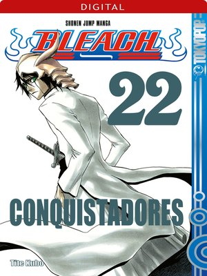 cover image of Bleach 22