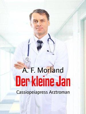 cover image of Der kleine Jan