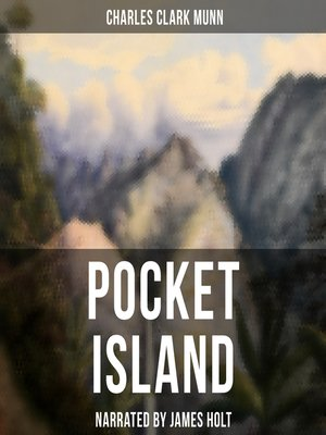cover image of Pocket Island
