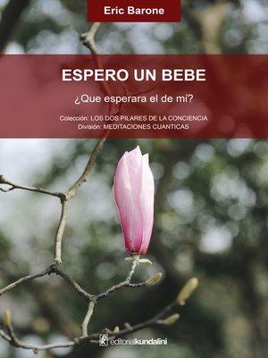 cover image of Espero un bebé