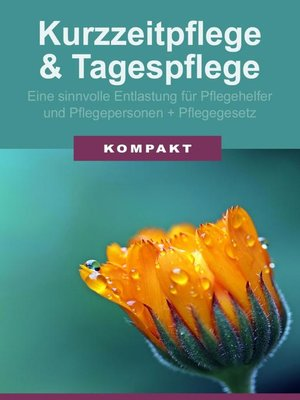 cover image of Kurzzeitpflege & Tagespflege--Eine sinnvolle Entlastung für Pflegehelfer & Pflegepersonen + Pflegegesetz 2017