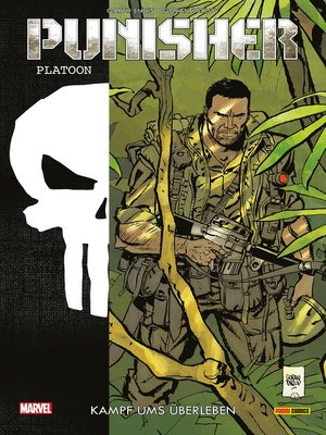 cover image of Punisher