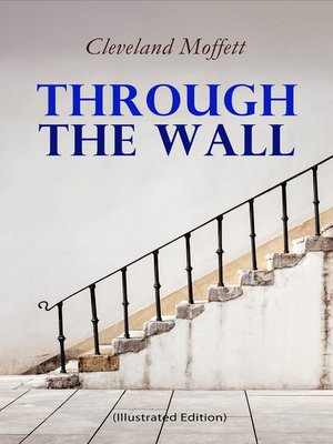 cover image of Through the Wall (Illustrated Edition)