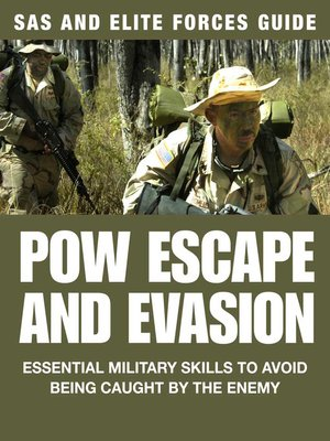 cover image of POW Escape and Evasion