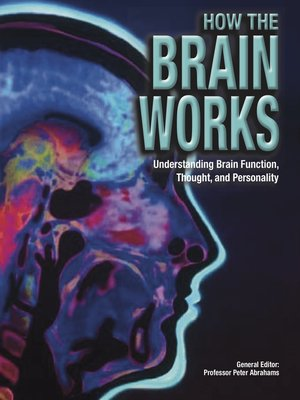 cover image of How the Brain Works