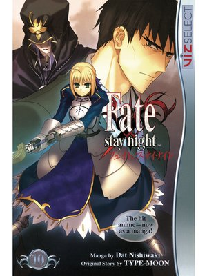 cover image of Fate/stay night, Volume 10