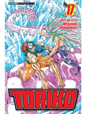 cover image of Toriko, Volume 17