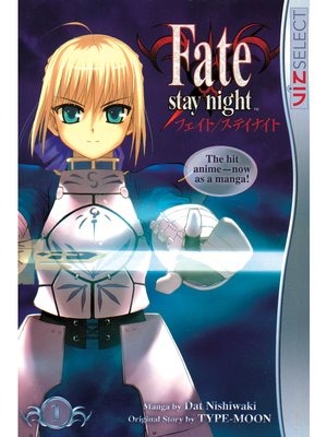cover image of Fate/stay night, Volume 1