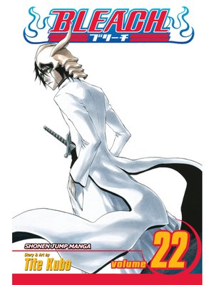 cover image of Bleach, Volume 22