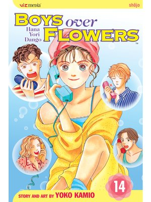 cover image of Boys Over Flowers, Volume 14