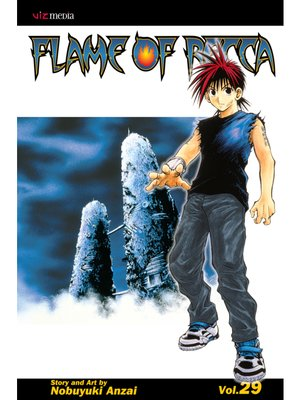 cover image of Flame of Recca, Volume 29