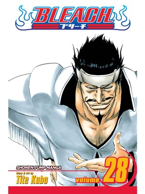 cover image of Bleach, Volume 28