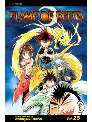 cover image of Flame of Recca, Volume 25