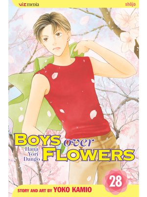 cover image of Boys Over Flowers, Volume 28