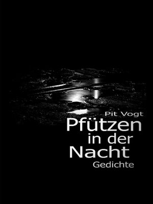 cover image of Pfützen in der Nacht