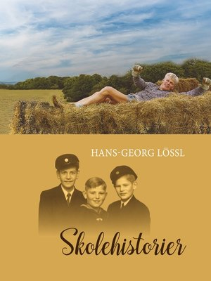 cover image of Skolehistorier