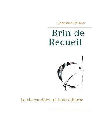 cover image of Brin de Recueil