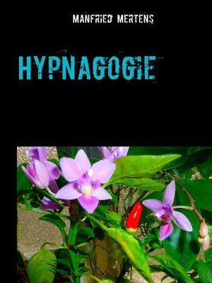 cover image of Hypnagogie