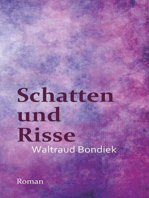 cover image of Schatten und Risse