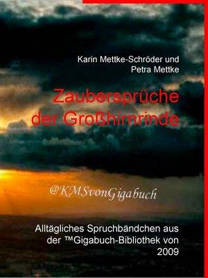 cover image of Zaubersprüche der Großhirnrinde