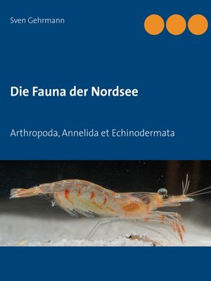 cover image of Arthropoda, Annelida et Echinodermata