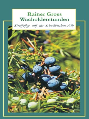 cover image of Wacholderstunden