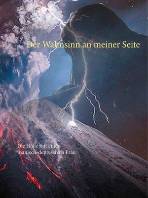 cover image of Die Hölle mit einer manisch-depressiven Frau