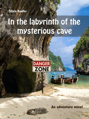 cover image of In the labyrinth of the mysterious cave