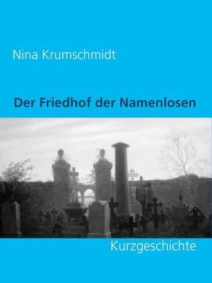 cover image of Der Friedhof der Namenlosen