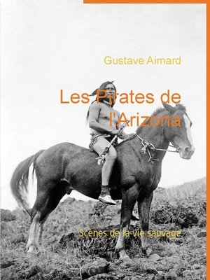 cover image of Les Pirates de l'Arizona