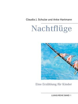 cover image of Nachtflüge