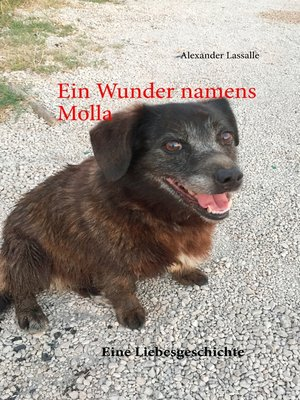 cover image of Ein Wunder namens Molla