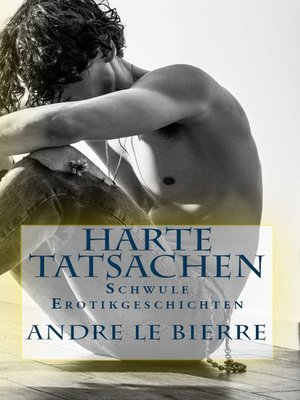 cover image of Schwule Erotikgeschichten