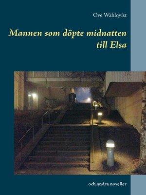 cover image of Mannen som döpte midnatten till Elsa