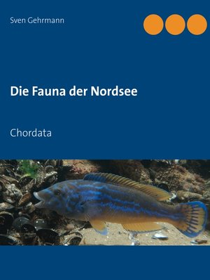 cover image of Chordata