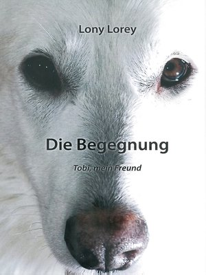 cover image of Die Begegnung