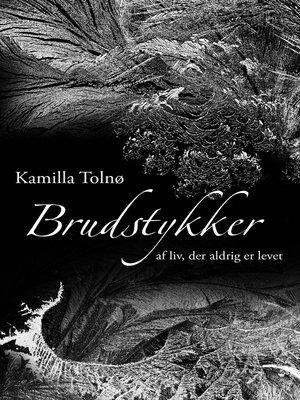cover image of Brudstykker