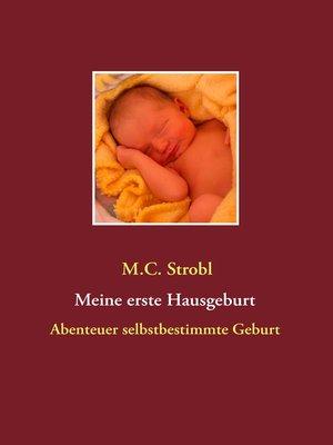 cover image of Meine erste Hausgeburt