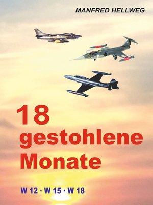 cover image of 18 gestohlene Monate