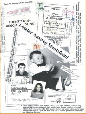cover image of Letzter Ausweg Staatsfeind