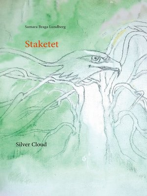 cover image of Staketet